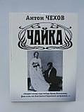 Акунин Б. Чехов А.П. Чайка (б/у)., фото 2