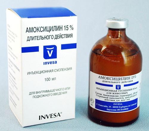 Амоксициллин 15% 10 мл Invesa (Испания) антибиотик длительного действия для поросят, телят, собак и кошек