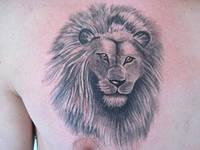 Татуировка льва на груди