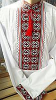 Мужская вышитая рубашка Код опт20