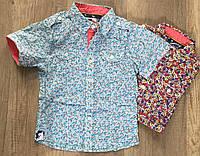 Рубашки на мальчика оптом, S&D, 4-14 лет,  № CD-207