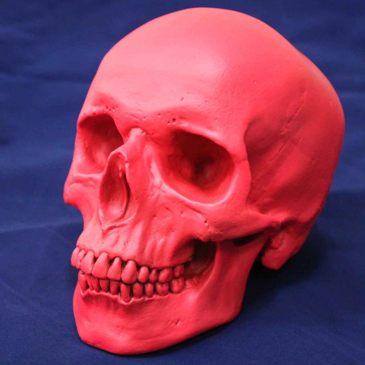 Гламурный розовый череп из скульптурного гипса, декоративный, в натуральную величину, фото 1