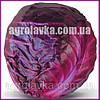Семена капусты краснокочанной КИОТО F1 (Kitano) 1000c
