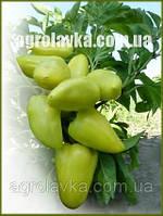 Семена перца сладкого ЯНИКА F1(Kitano) 500c