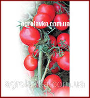 Семена томата детерминантного АСВОН F1(Kitano) 10 000с