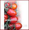 Семена томата детерминантного KS 720 F1(Kitano) 10 000с