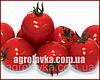 Семена томата детерминантного АНИТА F1(Kitano) 1000с