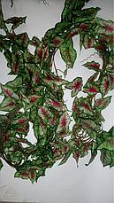 Искусственная лиана-сингониум, фото 3