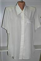 Женская блуза с коротким рукавом белого цвета, фото 1