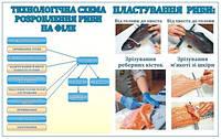 Кулинарный стенд Пластование рыбы