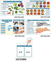 Комплект кулинарных стендов из пластика