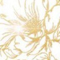 белый глянец золото