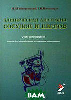 И. В. Гайворонский, Г. И. Ничипорук Клиническая анатомия сосудов и нервов