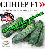 Семена, огурец партенокарпический кустовой Стингер F1 (100 семян) Lark Seeds (США), фото 2