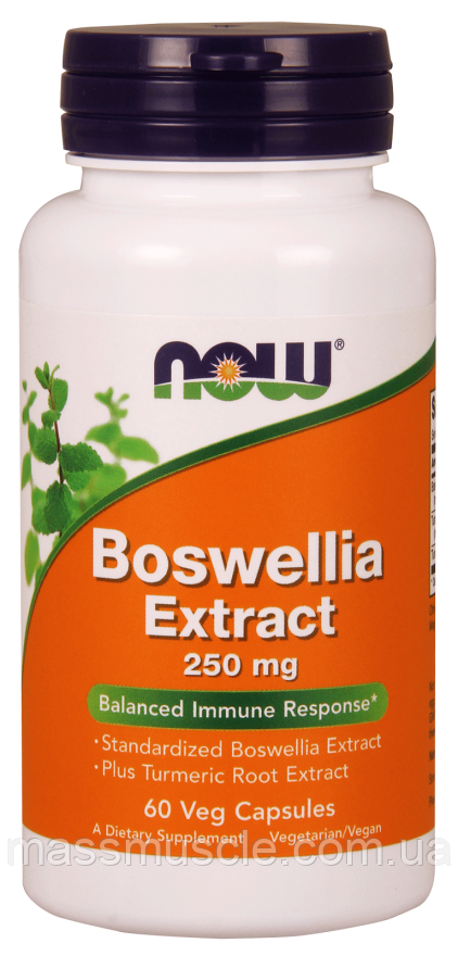 Хондропротектор NOW Foods Boswellia Extract 250mg 60 caps