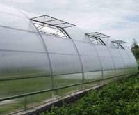 Производство и продажа теплиц и парников для дач и фермерских хоз