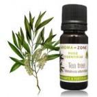 Чайное дерево (Melaleuca alternifolia) Объем: 100 мл