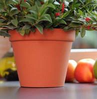 Горшок цветочный Glinka d 110 мм Prosperplast, фото 1