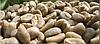 Кофе зеленый в зернах Колумбия Супремо 17 (ОРИГИНАЛ), арабика Gardman (Гардман)