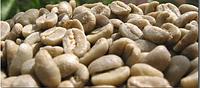 Кофе зеленый в зернах Колумбия Супремо 17 (ОРИГИНАЛ), арабика Gardman (Гардман), фото 1
