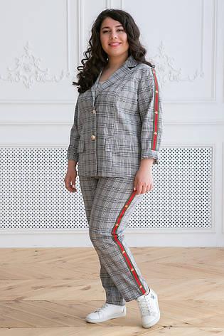 2dbcf34f5fe Женский костюм с брюками для полных женщин Арин клетка  1 250 грн ...