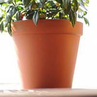 Горшок цветочный Glinka d 260 мм Prosperplast, фото 1