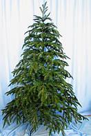 Елка литая Арктика 2.4 м. купить много елок к новому году, фото 1