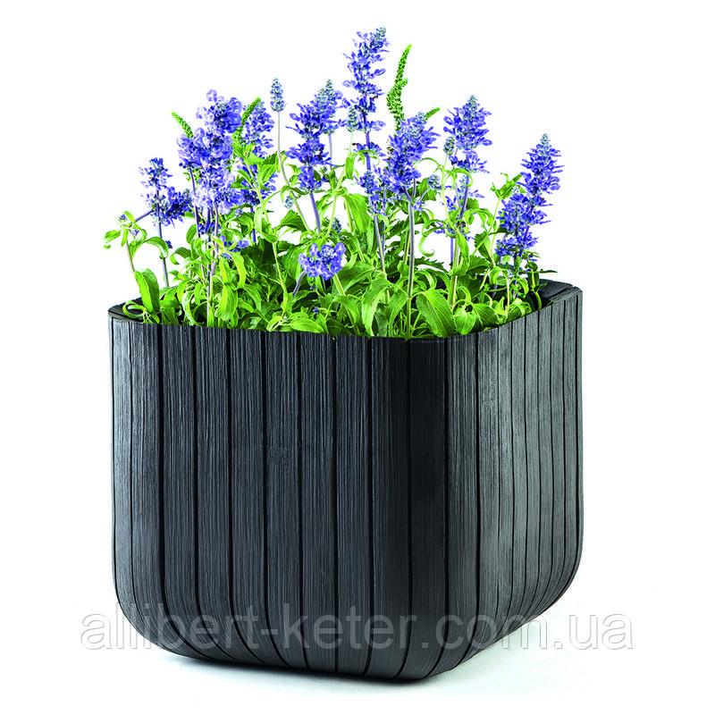 Квітковий горщик CUBE PLANTER M графіт (Keter)