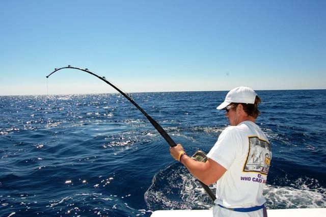 Просчитываем результативность рыбалки с 7 по 9 ноября.