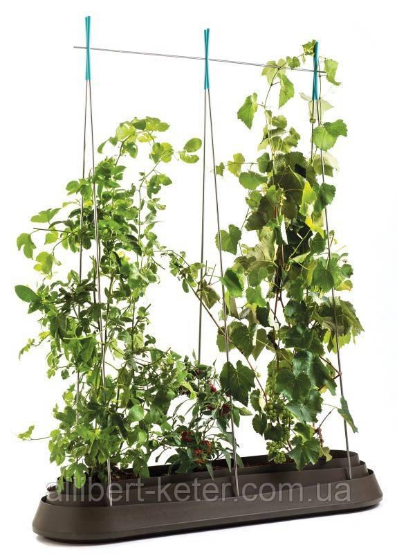 Подовжена садова грядка G-ROW  темно-коричнева (Keter)