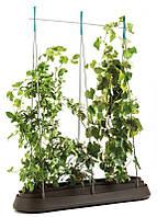 Подовжена садова грядка G-ROW  темно-коричнева (Keter), фото 1