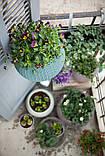 Квітковий горщик COZIES S кремовий (Keter), фото 3