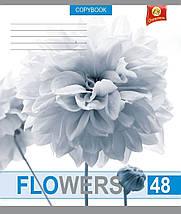 """Тетрадь 48 листов ТЕТРАДА """"Белые цветы"""" клетка, фото 3"""