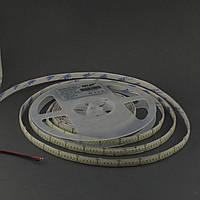 Светодиодная лента 3528/240 IP65 24В премиум белый, фото 1