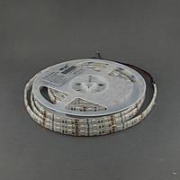 Светодиодная лента 5050/60 IP65 премиум RGB, фото 1