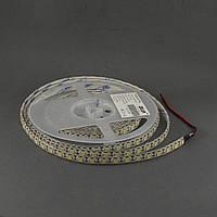 Светодиодная лента 5050/72 IP65 премиум белый, фото 1