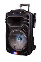 Портативная акустическая система с АКБ Fuhao FH-B08