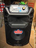 Портативная акустическая система с АКБ Fuhao FH-B10