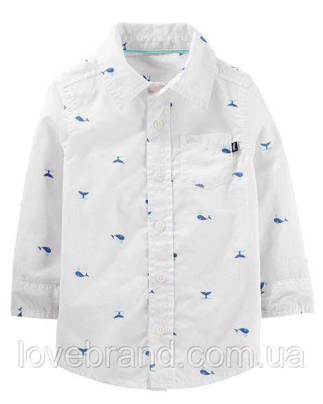 Рубашка для мальчика OshKosh 4Т/98-105 см