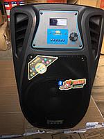Портативная акустическая система с АКБ Temeisheng  SL10-02