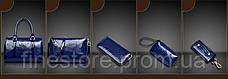 Набор женских сумок AL6535, фото 3