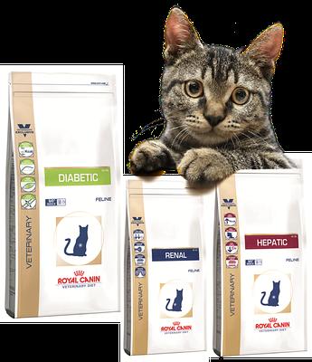 Royal Canin (Роял Канин) лечебный корм для котов
