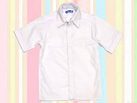 Рубашка SmileTime с коротким рукавом для школьника, белая