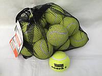 Набір м'ячів для великого тенісу Teloon coach