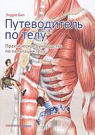Бил Эндрю Путеводитель по телу. Практическое руководство по пальпации тела