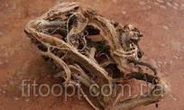 Копеечник красный корень из Алтая