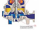 Канализационный насос Faggiolati G210R6T1-J7AA2, фото 2