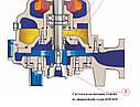 Канализационный насос Faggiolati G210R6T3-J7AA2, фото 2