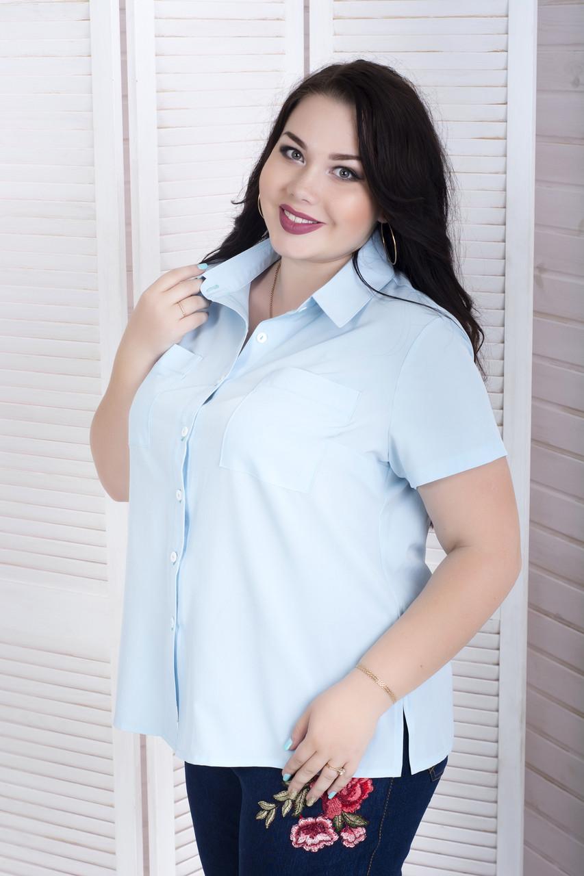 Голубая рубашка больших размеров на лето Ветерок