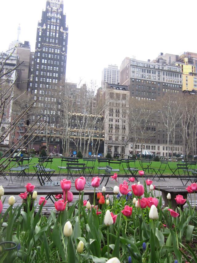 Раздел Длинные сарафаны - фото teens.ua - Нью-Йорк,тюльпаны